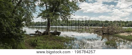 Panorama image of the historic Potomac river in summer