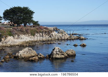 This is an image of the Pacific Grove, California coast line taken on a clear sunny day.