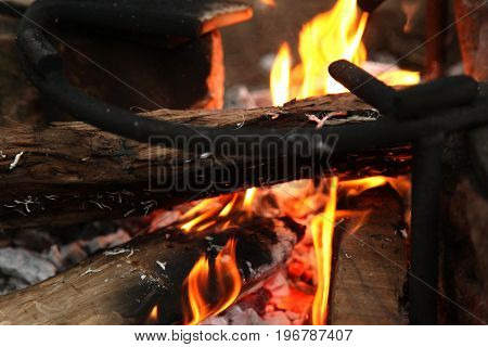 Burning firewood in the fireplace close up