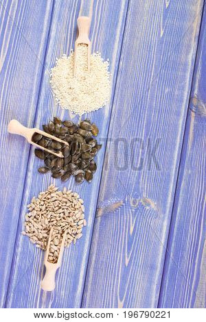 Sunflower, Pumpkin And Sesame Seeds On Purple Boards, Healthy Nutrition Concept, Copy Space For Text