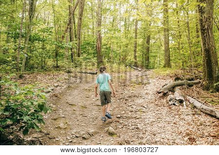 Boy walking through forest. hiking. The child walks along a path in a hilly forest, back view