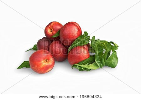 Composition of nectarines fruit on white background
