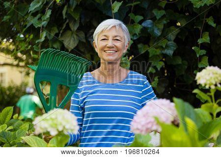 Portrait of smiling senior woman with rake amidst plants at backyard