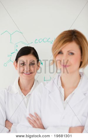 Cute Women In Front Of A White Board In A Lab