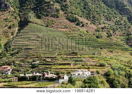Village and Terrace cultivation in the surroundings of Sao Vicente. North coast of Madeira Island Portugal