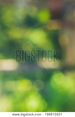 Green blur background. Abstract blurred texture. Abstract texture and background for designers. Green blurred background of green leaves and trees. Blurred trees.
