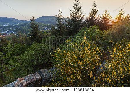 Hills around Baden Baden. Baden-Baden Baden-Wurttemberg Germany.