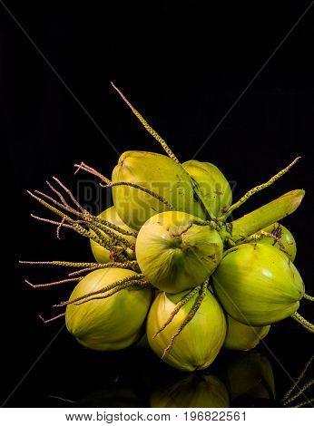 still life flesh coconut fruit on black background