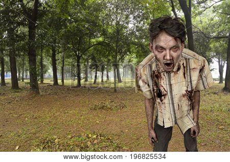 Portrait Of Screaming Asian Zombie Man
