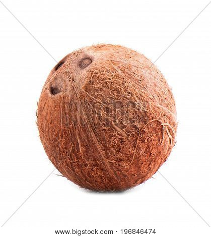 Close-up of a brown coconut isolated on a white background. A whole, fresh and organic nut. Tasteful tropical fruits. Organic foods. Freshness, nature, summer concept.
