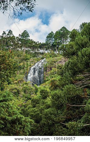 View of forest with waterfall and cliffs in a cloudy day near, Campos de Jordão, a town famous for its mountain and hiking tourism. Located in the São Paulo State, southwestern Brazil