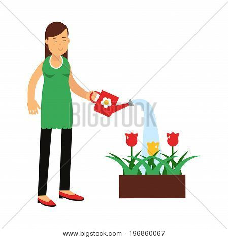 Beautiful young brunette woman watering flowers in the box vector Illustration on a white background