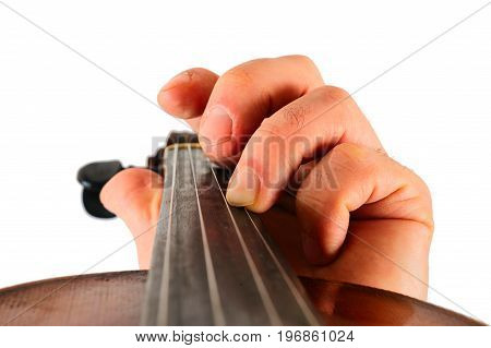 Image violin lies in a human hand.String instrument isolated on white background.Fingers play music