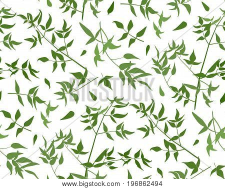 Seamless pattern Vine leaf different branches foliage natural twig green leaves watercolor style silhouette. Vector forest greenery decorative beautiful elegant illustration isolated white background