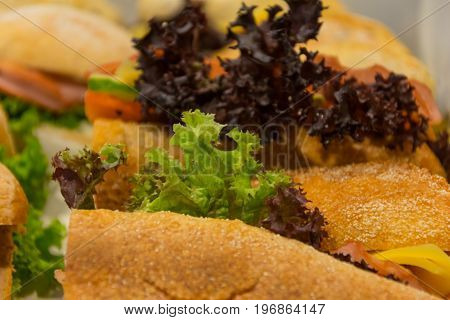 sandwich with cheese. background for graphic design.