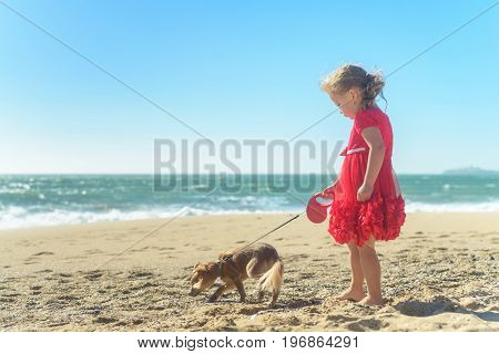 Little blond gir in red dress on the beach, running with Chihuahua dog, having fun in the sand, enjoying sunny day. rear view