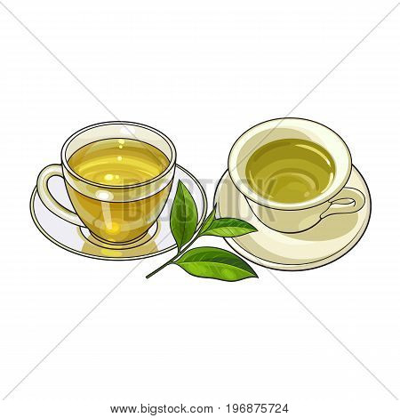 Two mug and saucer sets - porcelain and glass, green tea leaf, sketch vector illustration isolated on white background. Two hand drawn mugs and saucers, tea sets and green tea leaf