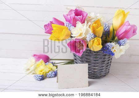 Pink yellow and white spring tulips and daffodils flowers in grey bucket and empty tag on white wooden background. Selective focus. Place for text.