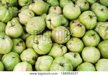 Guava Tropical Fruit Natural Backgroun Texture