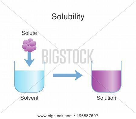 Dissolving solids. Solubility chemistry. Vector illustration design