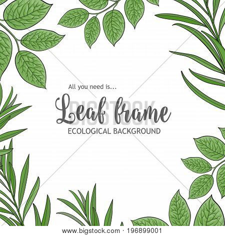 Square banner, frame of tree twigs, branches with fresh green leaves and round place for text, sketch vector illustration isolated on white background. Square frame of hand drawn twigs, leaves