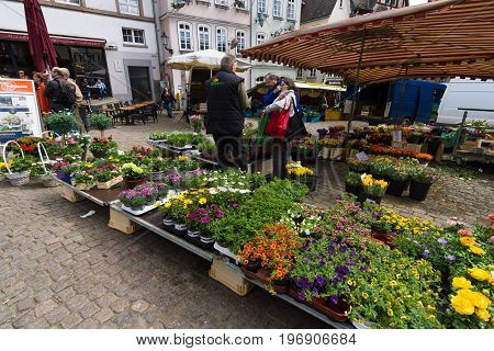 MARBURG GERMANY - APRIL 18 2015: Sale of fresh flowers at the market square of the old town. District Oberstadt. Marburg is a university town in the German federal state (Bundesland) of Hessen.