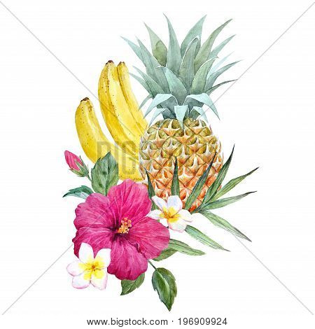 Beautiful illustration with hand drawn watercolor pineapple fruit