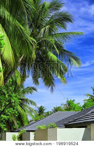 Territory of modern hotel at tropical resort on summer day