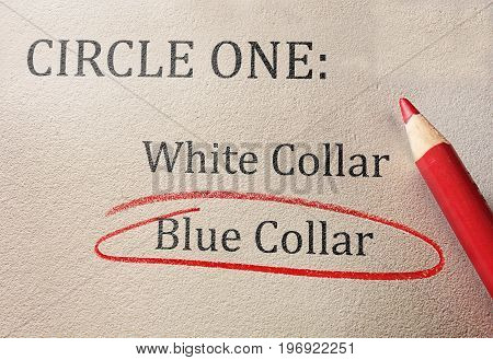 Blue collar and white collar work survey