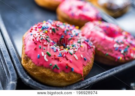 Pink iced donuts with rainbow sprinkles on display
