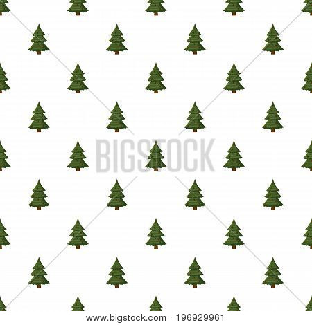Spruce with cones pattern seamless repeat in cartoon style vector illustration