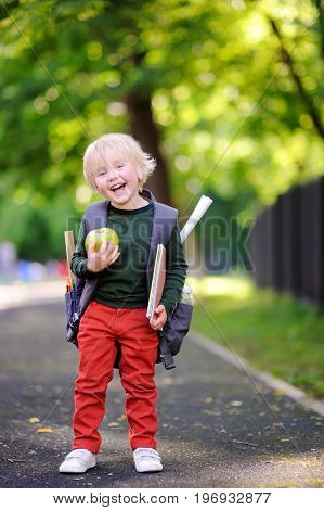 Cute Little Schoolboy Outdoors On Sunny Autumn Day. Back To School Concept.