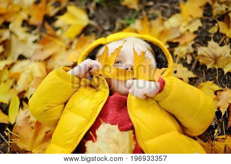 Happy Cute Toddler Boy Having Fun With Autumn Leaves