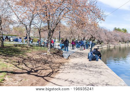 Washington Dc, Usa - March 17, 2017: People At Martin Luther King Jr Memorial During Cherry Blossom