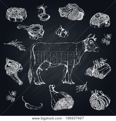 Meat monochrome hand drawn set with cow and parts of beef on black chalkboard vector illustration