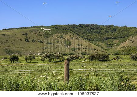 A view of the beautiful Litlington White Horse in the countryside of East Sussex UK.