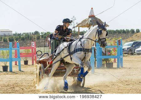 Indoor horse-hitch competition held in the village of trebujena, located in the province of Cadiz, southern Spain Photo taken on July 22, 2017