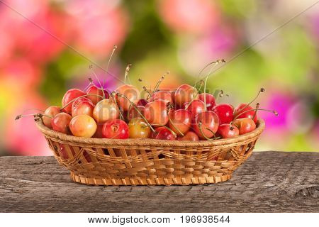 Yellow cherry in a wicker basket on a wooden table with a blurry garden background.