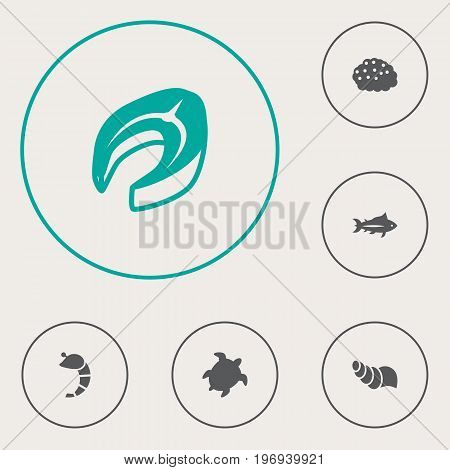 Collection Of Roe, Beefsteak, Tunny And Other Elements.  Set Of 6 Sea Icons Set.