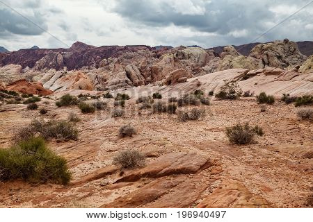 Spectacular landscape of desert at Valley of Fire State Park southern Nevada USA