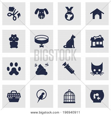 Collection Of Birdcage, Pile, Rat And Other Elements.  Set Of 16 Animals Icons Set.
