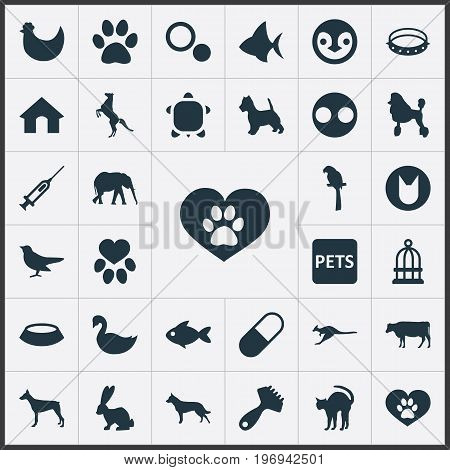 Elements Medicine, Puppy, Piglet And Other Synonyms Doghouse, Piglet And Penguin.  Vector Illustration Set Of Simple Wild Icons.