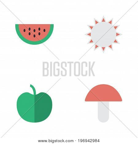 Elements Fruit, Melon, Fungus And Other Synonyms Apple, Fungus And Boletus.  Vector Illustration Set Of Simple Gardening Icons.