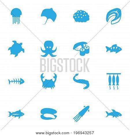 Collection Of Beefsteak, Tortoise, Shark And Other Elements.  Set Of 16 Food Icons Set.