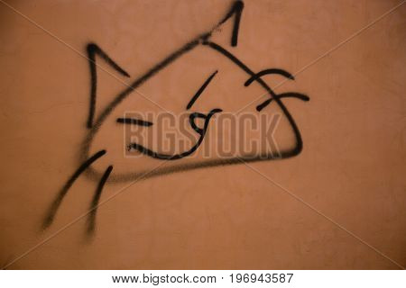 Concept simplicity cat face graphic wall background