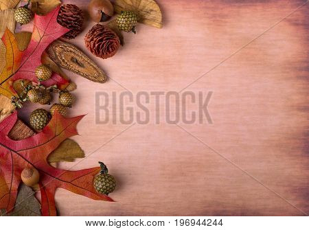 Colorful autumn leaves and nuts on vintage paper background with copy space