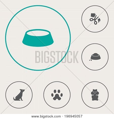 Collection Of Dog, Dish, Food And Other Elements.  Set Of 6 Animals Icons Set.