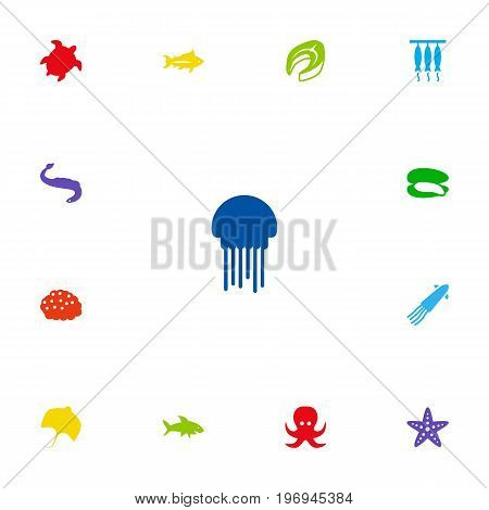 Collection Of Acne, Devilfish, Stingray And Other Elements.  Set Of 13 Seafood Icons Set.