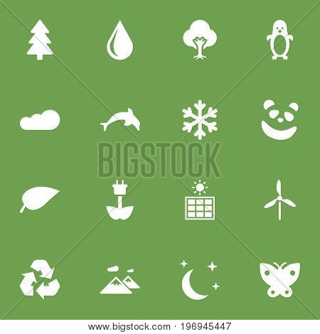 Collection Of Overcast, Midnight, Conservation And Other Elements.  Set Of 16 Nature Icons Set.