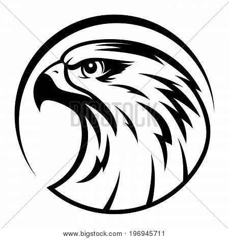 Eagle head logo Template, Hawk mascot graphic, Portrait of a bald eagle, vector